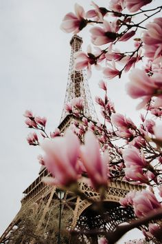 brookelmer: Spring in the city of love