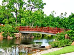 Morikami Museum and Japanese Gardens Delray Beach Florida