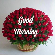 Beautiful good morning images with flowers Good Morning Love Text, Good Morning Romantic, Good Morning Sunday Images, Good Morning Beautiful Pictures, Good Morning Cards, Cute Good Night, Happy Morning, Good Morning Picture, Good Morning Friends