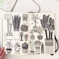House plants doodles
