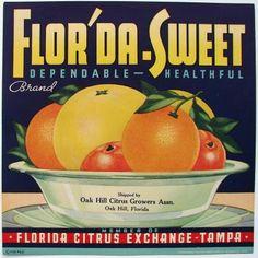 FLOR'DA-SWEET Vintage Tampa Florida Citrus Crate label