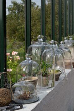 Row of glass cloches in a Scandinavian window Indoor Garden, Indoor Plants, Garden Cloche, Deco Nature, The Bell Jar, Bell Jars, Potting Sheds, Apothecary Jars, Window Sill