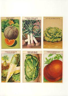 vintage veggie labels
