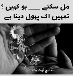 Urdu Quotes, Qoutes, The Lost World, Feeling Lonely, Urdu Poetry, It Hurts, Sad, Thoughts, Feelings