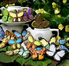 butterfly cookie wedding favor party favor shower Swallowtail Farms
