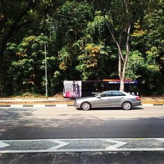 #mercedesbenz #eclass #tree #nature #singapore
