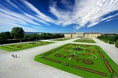 Carpet of flowers, Schonbrunn