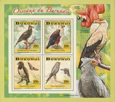 BUR 14102 cBirds of prey Birds Of Prey, Stamps, Painting, Birds, Postage Stamps, Seals, Painting Art, Paintings, Drawings