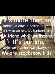 Stock show life. Stock show kids forever Cow Quotes, Animal Quotes, Farm Quotes, Way Of Life, The Life, Show Cows, Show Cattle, Cattle Barn, Dairy Cattle