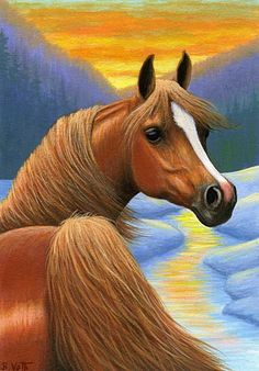 WINTER SUNSET......the winter evening sky is glowing brightly above this chestnut Arabian.....PRINTED