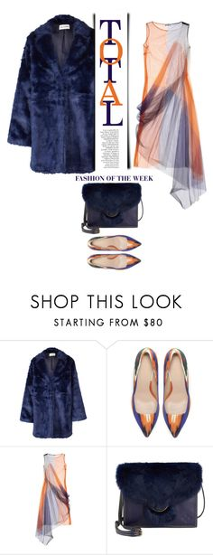 """TOTAL FASHION OF THE WEEK"" by emcf3548 ❤ liked on Polyvore featuring Won Hundred, Zara, Jil Sander and Patricia Nash"
