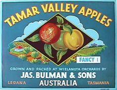 fruit crate label - Tamar Valley Apples