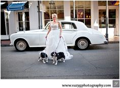 "Bride with two of her ""flower dogs"""