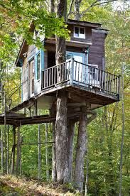 The Tiny Fern Forest Tree house Cabana, Vacation Places, Vacation Rentals, Beach Vacations, Fern Forest, Patio Grande, Cool Tree Houses, Small Buildings, In The Tree