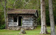 On old cabin built with tulip poplar wood at the turn of the century by the Cornett Family sits in Lilley Cornett Woods in Letcher County, KY.