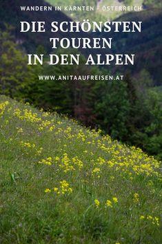 Wandern in Kärnten mit vielen Blüten und Blumen. Ausflugstipps für den Urlaub in Österreich. #wandern #wanderlust #alpen #karawanken #drautal #gailtal #saualpe #narzissenwiese #kräuterdorf #irschen #tipps #österreich #reisen #natur #garten #ausflug #austria #alm #bergurlaub Outdoor Reisen, Alps, Bergen, Tricks, Wanderlust, Inspiration, Mountains, Europe, Round Trip