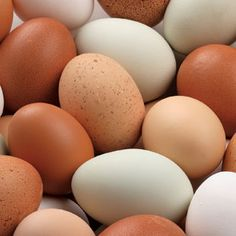 Learn the best ways to boil eggs for hard-boiled eggs, medium-boiled eggs and soft-boiled eggs. Plus, learn how to boil eggs and recipes for boiled eggs. Healthy Cooking, Healthy Eating, Healthy Recipes, Cooking Tips, Diabetic Recipes, Healthy Foods, Great Recipes, Favorite Recipes, Simply Recipes