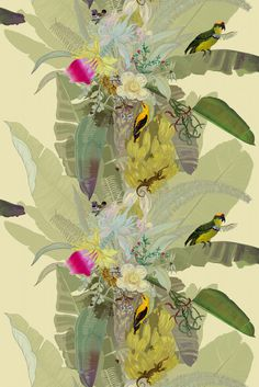 Timorous Beasties - Merian_Palm