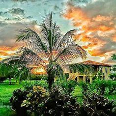 """Palm Sunset"" - Surf Sanctuary - Nicaragua  #photobydperry #loves_united_lazio ##wp #Italia_super_pics #ig_italy #ig_nicaragua #going_into_details #loves_united_roma #spgitaly #igerslazio #loves_united_places #ilikeitaly #italia_dev #pocket_Italy #gallery_of_all #total_Italy #loves_united_team #yallerslazio  #italy_hidden_gem #igw_italy #fdnf #lazio #ig_lazio_  #ig_lazio #nikontoday #unlimitedrome #my_rome  #loves_united_italia_ #thehub_italia #loves_united_europe"