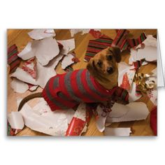 bad dog christmas card - Dog Christmas Card Ideas