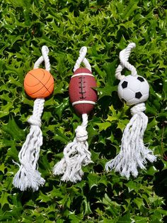 Dog Rope Toy and Sport Vinyl Ball  - so cute!!!  My little guy will love this!!!!!