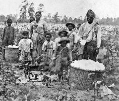 Slaven op een katoenplantage in Savannah, Georgia ergens in 1860. Het is tevens de voorkant van het boek 'Roots' dat ook over de slavernij gaat. De afgelopen jaren heb ik veel gelezen en gezien over de slavernij en het is altijd iets wat mij erg aangrijpt. Ik vind het heel indrukwekkend dat zoiets, voor mij nu onvoorstelbaars, nog niet zo heel lang geleden de normaalste zaak van de wereld was. Ik heb de digitale versie via Google gevonden door op het boek 'Roots' te zoeken. Iris van Beek