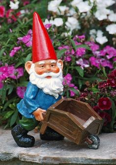Winsome Miniature Funny Garden Gnomes Gnome For Home  Garden Furniture  With Likable Garden Gnome With Wheelbarrow Sold Out Why Are All These Lawn Gnomes  Standing Around When There Is So Much Work To Be Done Rain Or Shine Youll  Find This  With Beauteous Covent Garden Restaurant Deals Also Haskins Garden Centre Dorset In Addition Buy Vermiculite For Gardening And Netting For Gardens As Well As Palmers Garden Centre Narborough Additionally Mediterranean Courtyard Garden From Pinterestcom With   Likable Miniature Funny Garden Gnomes Gnome For Home  Garden Furniture  With Beauteous Garden Gnome With Wheelbarrow Sold Out Why Are All These Lawn Gnomes  Standing Around When There Is So Much Work To Be Done Rain Or Shine Youll  Find This  And Winsome Covent Garden Restaurant Deals Also Haskins Garden Centre Dorset In Addition Buy Vermiculite For Gardening From Pinterestcom