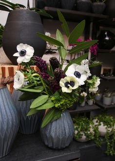 A custom Valentine's Day arrangement at a Winston Flowers' retail store. Cut Flowers, Fresh Flowers, Purple Flowers, Flowers Garden, Colorful Flowers, Beautiful Flower Arrangements, Floral Arrangements, Beautiful Flowers, Purple Flower Tattoos