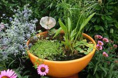 Keramik Topf Wassergarten Balkon anlegen Ideen schnelle Anleitung