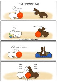 "The ""Chinning"" War Giant Bunny, Big Bunny, Bunny Art, Bunny Pics, Bunny Bunny, Pet Bunny Rabbits, Pet Rabbit, Funny Rabbit, Funny Bunnies"
