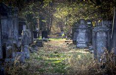 Sławni Żydzi - cmentarz żydowski w Łodzi - Widziałam.pl