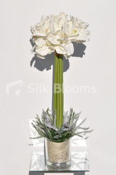 Tall U0026 Bright White Amaryllis And Heather Display #silk #flowers #home # Decor