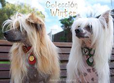 Chic fashion for pets Moda Animal, Pet Boarding, Cute Dog Photos, Animal Fashion, Cute Dogs, Cousins, Animals, Shop, Life