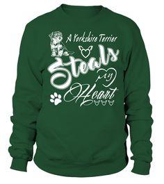 Yorkshire-Terrier-Steals-my-heart-W