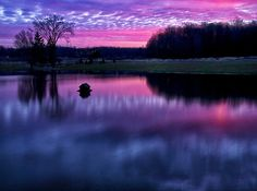 $ Sunrise on the pond at my home in McKean, PA.