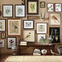 birchlaneTransform a blank wall into an inspired space by hanging different sized frames and photographs with a unified theme of family pictures or images inspired by nature. #transform #salonwall #gallerywall #familyphotos #nature