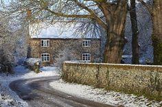 {Cottage, Surlingham, Norfolk, England by Robert Harding}