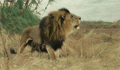 Lion Digital Art - Lion Fine Art Print Friedrich Wilhelm Kuhnert