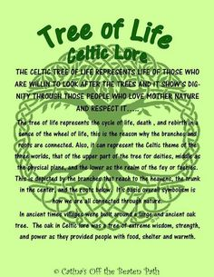Celtic tree of life Tree Of Life Quotes, Quotes To Live By, Symbols And Meanings, Celtic Symbols, Tree Of Life Meaning, Magical Tree, Cycle Of Life, Celtic Tree Of Life, Spiritual Wisdom