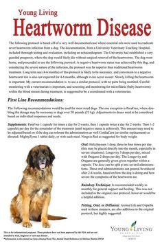 Young Living Essential Oils: Heartworm Essential Oils Dogs, Essential Oil Uses, Young Living Essential Oils, Young Living Pets, Oils For Dogs, Living Oils, Pet Health, Natural Medicine, Pets