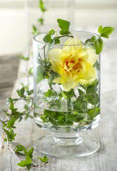 Så fixar du påskfint med blommor – 10 tips | Hemmets
