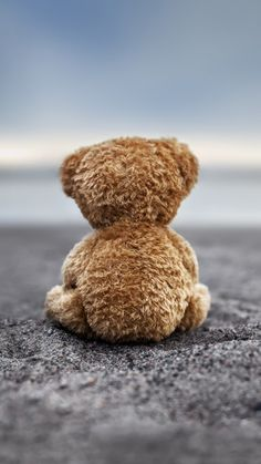 Bear Doll Back Lonely Ground #iPhone #6 #plus #wallpaper