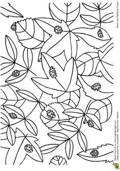 Cache Cache Feuilles Coccinelles, page 4 sur 16 sur HugoLescargot.com Colouring Pages, Coloring Pages For Kids, Coloring Sheets, Coloring Books, Easy Craft Projects, Diy Crafts, Diy Spring, Secret Garden Colouring, Doodles Zentangles