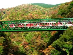 Hakone Tozan Line – Climb The Mountain By Train And Enjoy The Scenery!