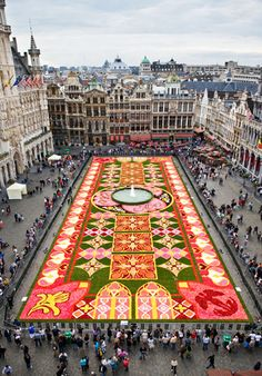 Brussels' Flower Carpet 2010. The 2012 flower carpet opens in August. Amazing. See the whole story: http://www.flowercarpet.be/site/main.php?lg=en
