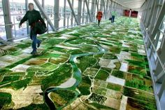 The Flying Carpet    Seyed Alavi