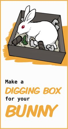 A step by step guide to make a digging box for your rabbit, along with other easy and cheap projects to make for your rabbit. Diy Bunny Cage, Diy Bunny Toys, Bunny Cages, Rabbit Cages, Diy Bunny Hutch, Pet Bunny Rabbits, Baby Bunnies, Cute Bunny, Rabbit Toys