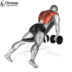 Abs Workout Video, Gym Workout Tips, Workout Plans, Fitness Workouts, Gif Sport, Muscle Weakness, Shoulder Muscles, Lower Back Exercises, Kettlebell Training