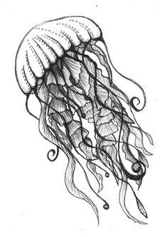 Octopus drawings colored pencil drawings of underwater ocean drawing Seahorse Drawing, Ocean Drawing, Jellyfish Drawing, Jellyfish Art, Octopus Painting, Octopus Sketch, Pencil Art, Pencil Drawings, Animal Drawings