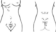Massage Logo, Lymphatic System